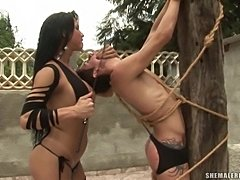 Strict shemale in outdoor bondage act