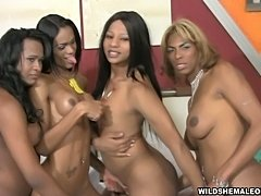 Crazy shemale foursome