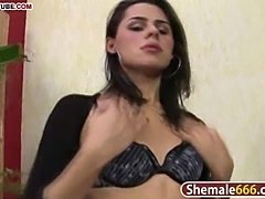 Charming black haired shemale jerking off