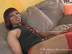 Huge Ebony TS Cock In Solo