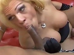 Shemale in lingerie eats ebony prick