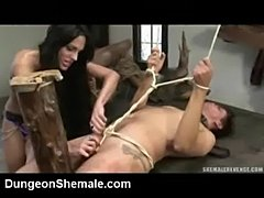 Humiliated by a tranny!  free
